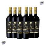 Wine-Set_D_with_2184x6
